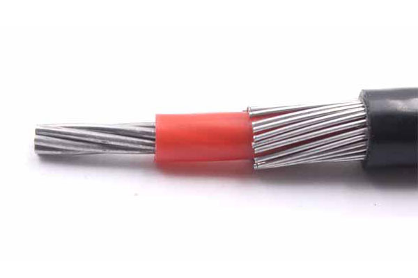 Transmission line PVC Insulation Single or Multi-core XLPE Concentric Cable 0.6/1kV